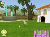 Hollywood Pets Windows This is the Backyard, one of the locations in the game
