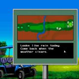 Jack Nicklaus presents The Major Championship Courses of 1989 Sharp X68000 Just like the main game, this one also has copy protection and if you fail to pass it tells you to wait when the weather clears