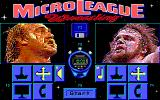 MicroLeague Wrestling DOS This match: Hogan vs. Savage!