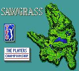 PGA Tour 96 Game Gear Next course: Sawgrass