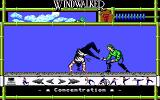 Windwalker DOS Combat is done through a similarly unique interface. Something akin to a slow paced Street Fighter-esque game, you perform martial arts against your opponents.