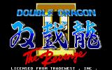 Double Dragon II: The Revenge DOS Title screen