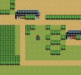 Inindo: Way of the Ninja SNES In a large town