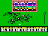 Wembley Greyhounds ZX Spectrum The race is in progress