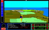 Jack Nicklaus' Greatest 18 Holes of Major Championship Golf PC-88 Curly on hole seven