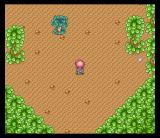Magic Knight Rayearth SNES A lone tree in a forest