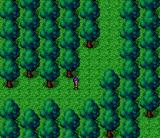 Magna Braban: Henreki no Yusha SNES Alex in the forest
