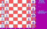 The Chessmaster 2000 DOS You can rotate the board and change colors (CGA)