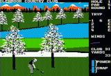 Famous Courses of the World: Vol. II Apple II Relatively close to the hole, but I'm already over par