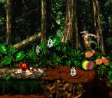 Donkey Kong Country 2: Diddy's Kong Quest SNES Playing a level in Lost world