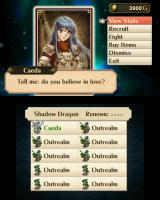 Fire Emblem: Awakening Nintendo 3DS Through SpotPass, I have the opportunity to recruit characters from past <i>Fire Emblem</i> games.
