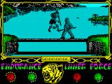 The Way of the Tiger ZX Spectrum AVENGY vs ZOHNY in the HOODS!!