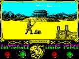 The Way of the Tiger ZX Spectrum - Brother! My beloved face on the mirror! Please don't die now... after all we've been thru... (sobbing and weeping)