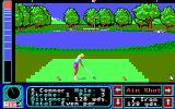 Jack Nicklaus' Greatest 18 Holes of Major Championship Golf Apple IIgs Fourth hole with a female player