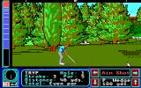 Jack Nicklaus' Greatest 18 Holes of Major Championship Golf Apple IIgs Close to trees