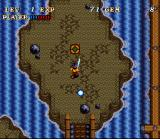 Soul Blazer SNES By stepping on those green things, you can release objects.