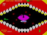 Molar Maul ZX Spectrum Mastering the cleaning. Look at the splendour of 15 bright new white teeth!
