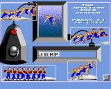 Skate of the Art Amiga How to use the joystick