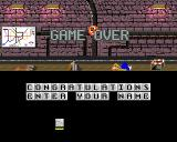 Skate of the Art Amiga Game over