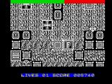 Terra Cognita ZX Spectrum If you fly over the plus sign your speed increase  and the screen will turn white color.