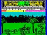 Legend of the Amazon Women ZX Spectrum A pack of bushes full of jumping spiked balls.