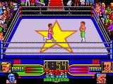 American Tag-Team Wrestling Amiga This is where you fight your opponent