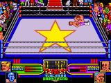 American Tag-Team Wrestling Amiga There are some moves you can do during the fight.
