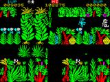 Sabre Wulf ZX Spectrum Sabreman was bumped by a native. These are invulnerable but can be scared.