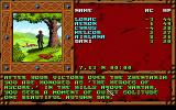Treasures of the Savage Frontier DOS Here it all starts