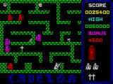 Cavelon ZX Spectrum Level 3.