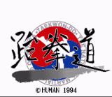 Taekwon-Do SNES The game logo