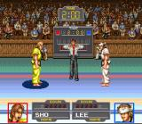 Taekwon-Do SNES The traditional salute