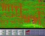 Lost on Parrot Island Amiga So many trees