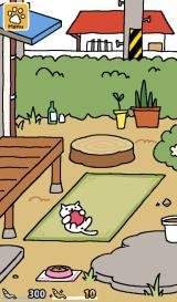 Neko Atsume: Kitty Collector Android We've gotten our first visitor.