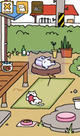 Neko Atsume: Kitty Collector Android Photo op!