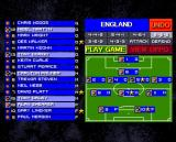 Sensible Soccer: European Champions Amiga You can manage your team formation and select player who will participate in the game.
