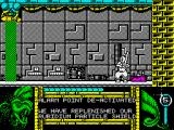 Kendo Warrior ZX Spectrum Our warrior found rubidium particle shield.