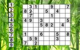Sudoku86 DOS Placing digits