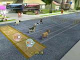 Petz Sports Windows Race against other dogs