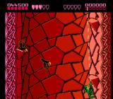 Battletoads NES Toads swings about on a rope.