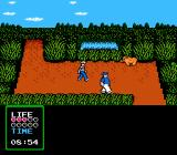 The Adventures of Gilligan's Island NES A wild boar charges forward