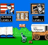 North & South NES Choosing game options