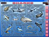 eMazing Mazes Windows The Sharks Maze