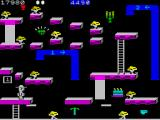 Bounty Bob Strikes Back! ZX Spectrum Those tubes transport you around the screen