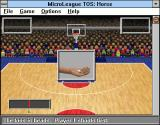 Time Out Sports: Basketball Windows 3.x The coin is tossed to define the player's participation order