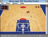 Time Out Sports: Basketball Windows 3.x Cleaning more sweat