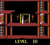 Prince of Persia Game Boy Color Level 10.
