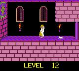 Prince of Persia Game Boy Color This is not a spoiler. It's just LOVE.