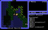 Ultima IV: Quest of the Avatar Windows I defeated the bridge troll and now I have a treasure chest I can open