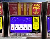 Hoyle Slots & Video Poker Windows The Joker Poker machine